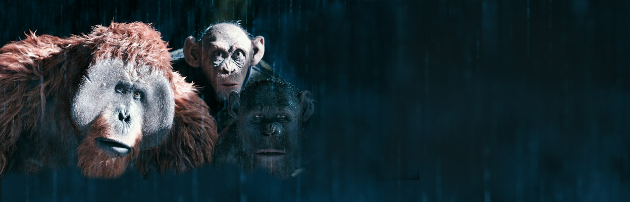 War For The Planet Of The Apes (English) hindi dubbed torrent